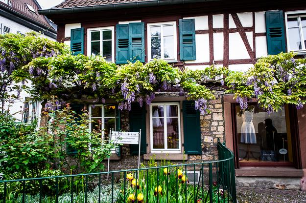 Hochzeitsfotograf in Weinheim 66