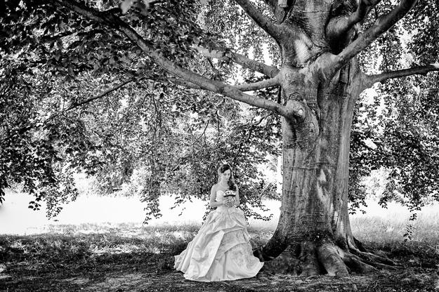 Hochzeitsfotograf Mathildenhöhe